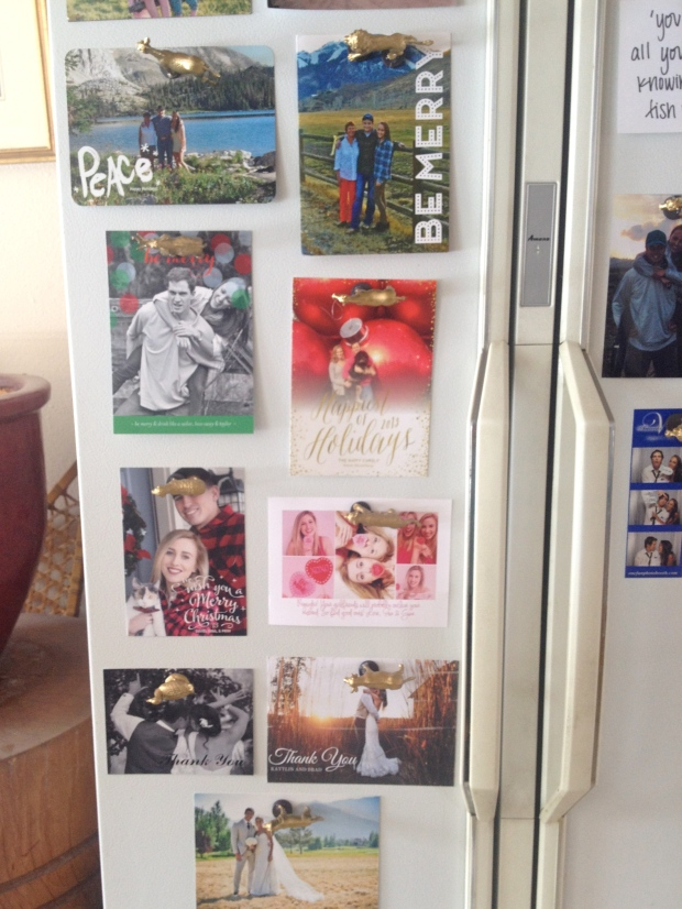 display holiday cards, thank you cards, your favorite pictures or quotes with the magnets!