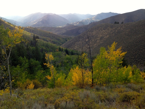 lovely view from half-way up proctor — and a great excuse to take a breather!