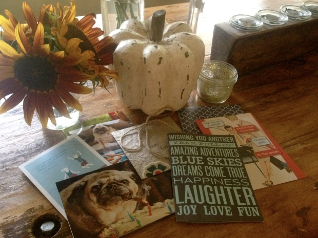 birthday treasures: just a few of the wonderful cards i received with loving birthday wishes, garden picked sunflowers and a decorative white pumpking