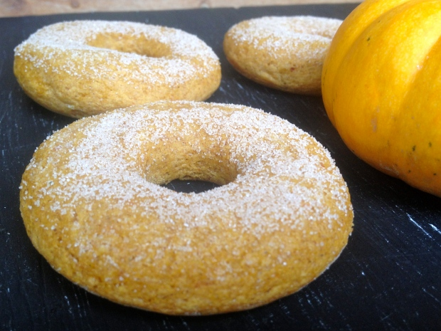 pumpkin donuts + a mini orange pumpkin