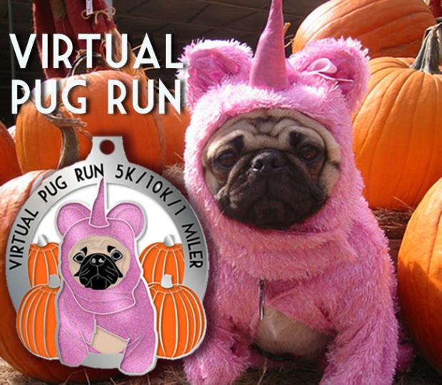 virtual pug run!