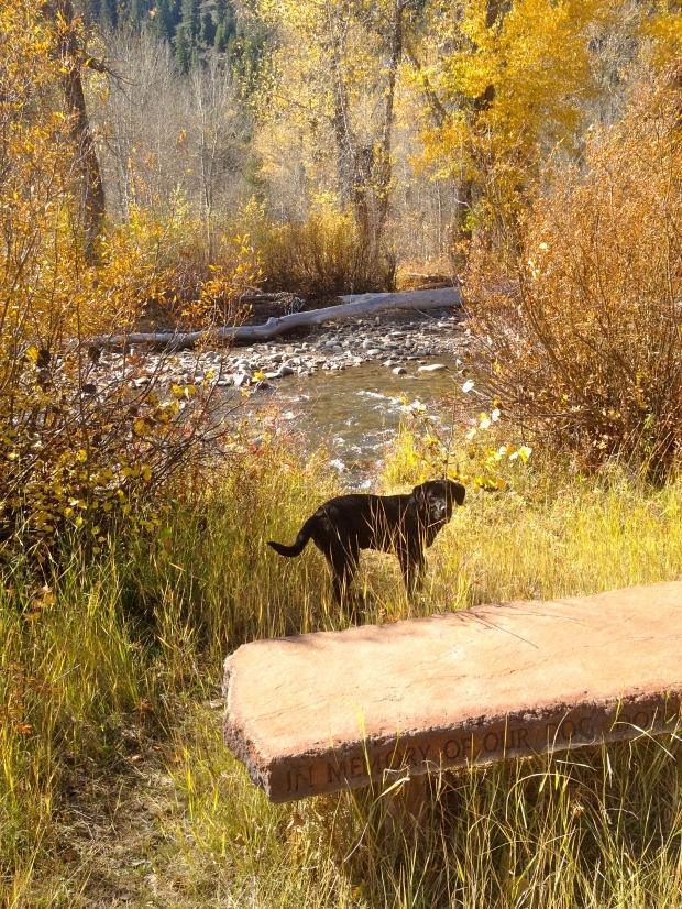 fall adventure walks