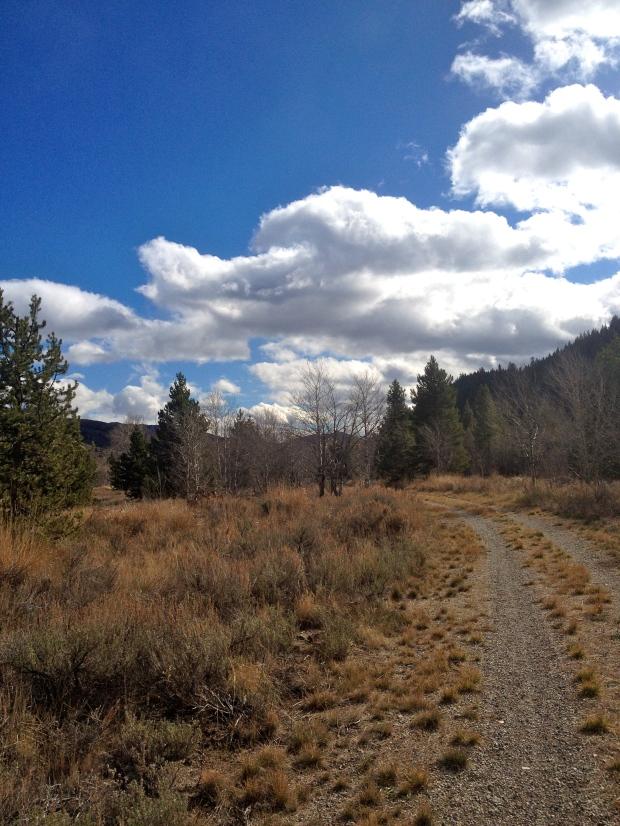 the harriman trail