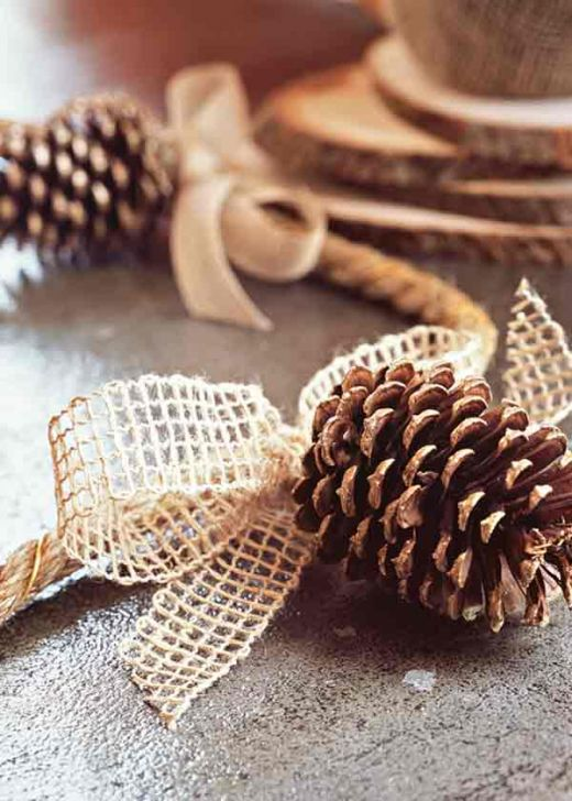 diy pinecones that would make for great name tags