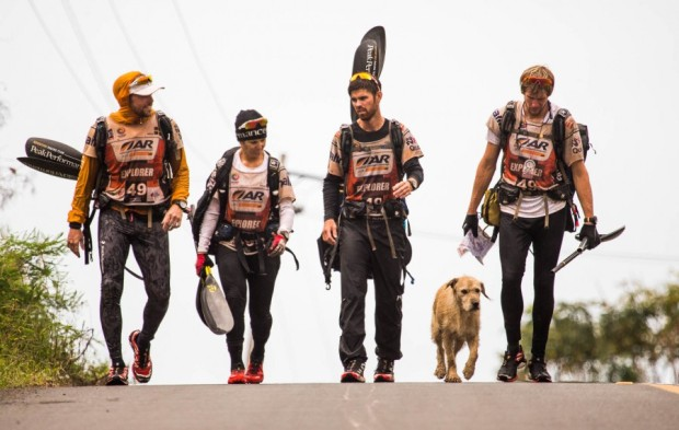 stray dog, Arthur, joins adventure racing team