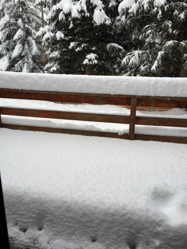 """waking up to 10"""" of fresh snow on a Sunday is the best!"""