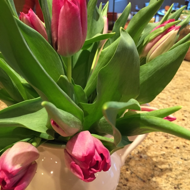 lovely spring tulips for mom
