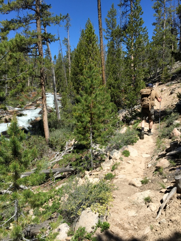 "hiking along ""hell roaring creek"""