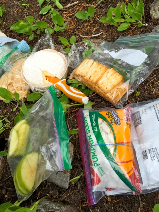 much needed picnic - nothing tastes better than half a wheel of brie at 9000 feet