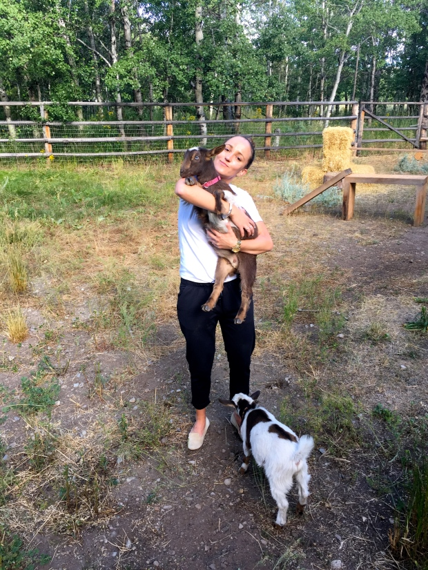 trying to get the goats to cooperate for a photo: fail. wearing my new pants everyday: success.