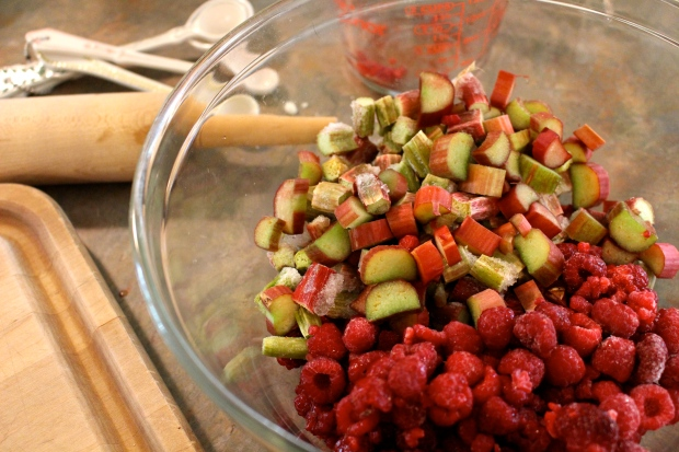 raspberries + rhubarb = love
