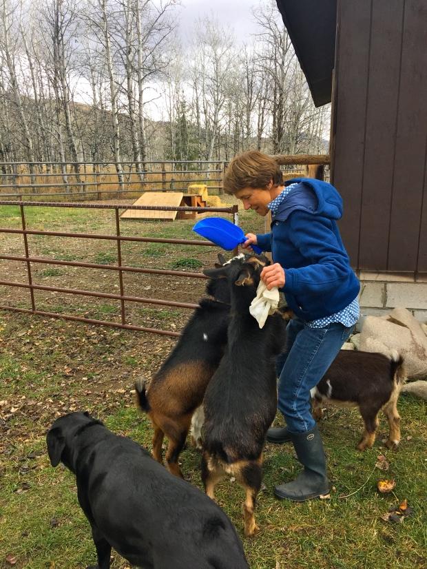someone loves her goat herd