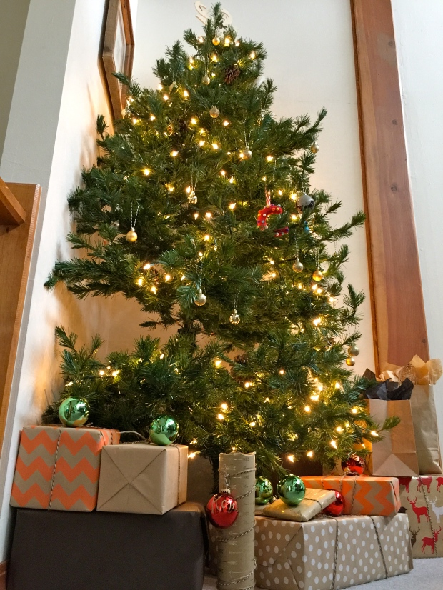 our tree fit for some pretty presents
