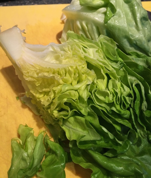 pretty butter leaf lettuce